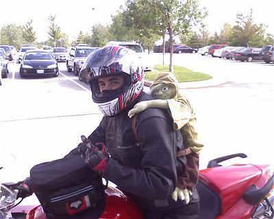 2007_yodabackpack.jpg