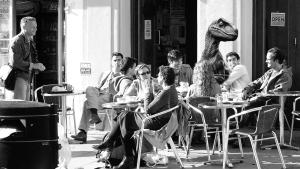 raptor in cafe